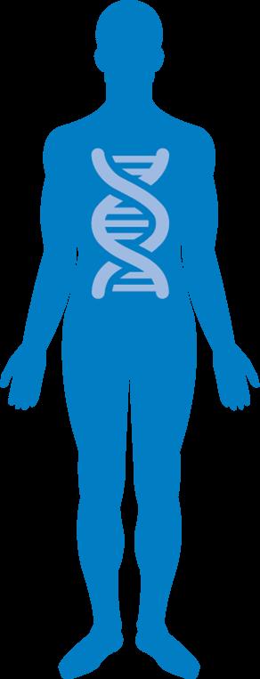 Invloed van DNA
